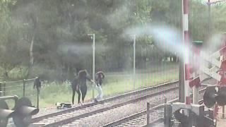 Download Oorzaak vertraging: Acrobaten op het spoor Video