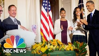 Download President Obama's Best Turkey Pardon Moments | NBC News Video