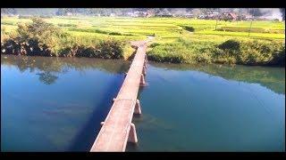 Download 【地方観光PV】 高知県四万十町 移住・Uターン促進映像 Video