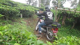 Download Honda Win 100 Trabas Jalur Kebun Teh Gambung Ciwidey Bareng Dines Luar Bandung Video
