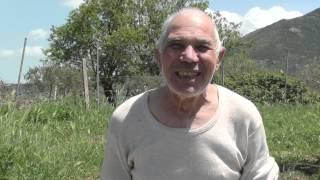 Download eco mulo 2 (lo zio piddo di prizzi) ultimo dei mulattieri Video