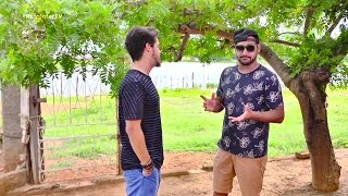 Download Entrevista Raí Soares no Rota InterTV Video