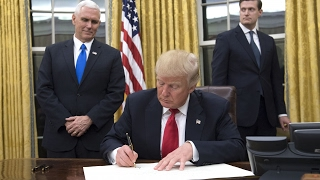 Download Trump signs executive order targeting Obamacare Video