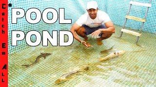 Download EMPTY POOL Turns MEGA FISH POND! Video