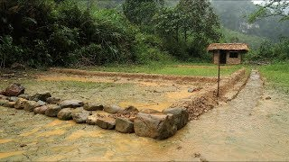 Download Primitive technology: Farmland, land reclamation to grow rice - Part 1 Video