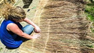 Download Natural materials in the construction sector Video