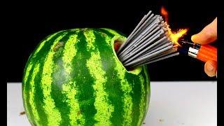 Download WOW 10 Firecracker Tricks 100 FIRECRACKERS vs WATERMELON Video