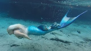 Download BILL'S AMAZING SWIM WITH A MERMAID! Video