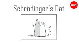 Download Schrödinger's cat: A thought experiment in quantum mechanics - Chad Orzel Video