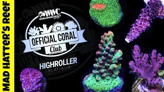 Download World Wide Corals Coral Club Review Video