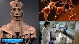 Download New Discovery! Egyptian Pharaoh DNA Not Of This World? 2019-2020 Video