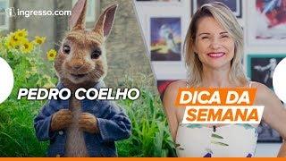 Download Dica da Semana com Renata Boldrini | Pedro Coelho Video