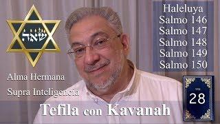 Download Kabbalah: la Tefila con Kavanah - clase 28 Salmos 146 a 150 (clase completa) Video