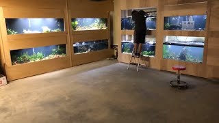 Download Goodbye old fish room. Hello new fish room! Video