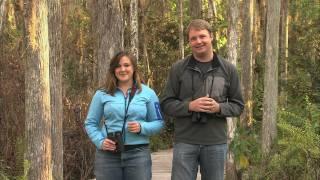 Download Inside Birding: Habitat Video