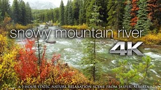 Download 4K Screensaver: Snowy Fall River (NO MUSIC) Nature Relaxation Static Video 1HR Video