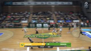 Download Adrien Sturt (20 points) Highlights vs. Dandenong Video