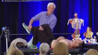 Download Hip and Sacroiliac Joint Techniques Video