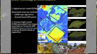 Download Using lightweight unmanned aerial vehicles to monitor tropical forest recovery by Rakan A. Zahawi Video