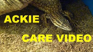 Download ACKIE MONITOR CARE VIDEO! Video