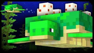 Download ✔ Minecraft: 20 Things You Didn't Know About Turtles Video
