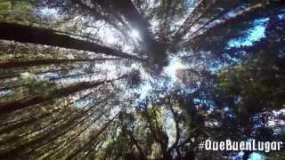 Download Prusia-Cartago, Costa Rica ¡Qué Buen Lugar! HD Video