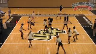 Download Middle Hitter: Next Level Training - Todd Dagenais Video