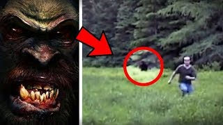 Download 5 Compelling BIGFOOT Sightings Caught on Camera Video