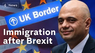 Download Post-Brexit immigration plan unveiled by government Video