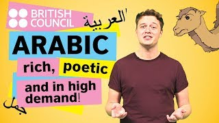 Download Arabic: rich, poetic, and in high demand Video