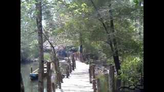 Download Andaman & Nicobar - Baratang (Lime Stone Caves, Mud Volcano & Parrot Island).mpg Video