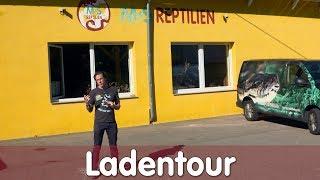 Download Reptil TV - Folge 109 - Ladentour Video