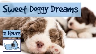 Download 2.5 HOURS of Sweet Doggy Dreams Music. Send your Dog to Sleep with this Music! Video