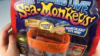 Download Sea-Monkeys Two Pack Set Video