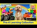 Download Learning Collection by Brain Candy TV |Vol 1| Learn English, Numbers, Colors and More Video