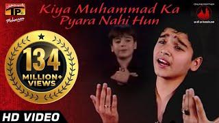 Download Kiya Muhammad Ka Pyara Nahi Hun, Ali Shanawar & Ali jee 2013 14 Video