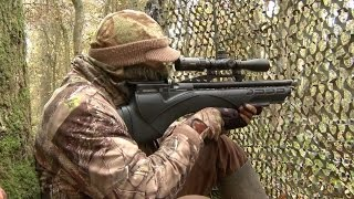 Download The Airgun Show – hunting squirrels with the Daystate Renegade PLUS the Air Arms Galahad on test Video
