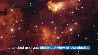 Download Astronomy: A Closer Look At Star cluster RCW 38 Video
