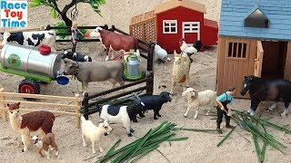 Download Cattle Transport Truck Toy Farm plus Fun Toy Animals For Kids Video