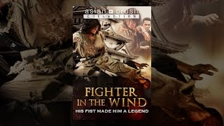 Download Fighter in the Wind Video