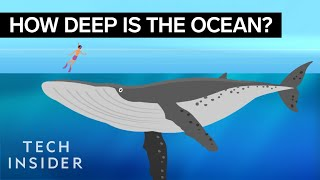 Download This Incredible Animation Shows How Deep The Ocean Really Is Video