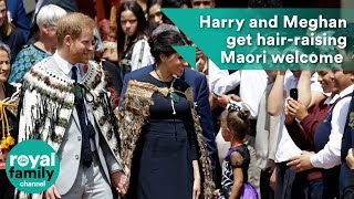 Download Harry and Meghan get hair-raising Maori welcome in New Zealand Video
