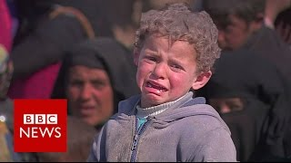 Download Surviving Mosul: Residents who've escaped the fighting - BBC News Video