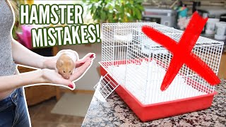 Download 6 MISTAKES hamster owners make! Video