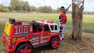Download Paw Patrol Marshall NEW Fire Engine Ride On Rescue Cali From Tree Ckn Toys Video