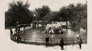 Download From Swans to Science: 150 Years of Lincoln Park Zoo Video