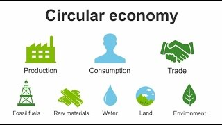 Download How to become a Green SME in a Circular Economy Video