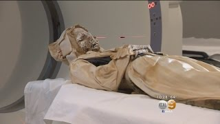 Download 300 Years After Death, Mummies Get An Autopsy In Santa Ana Video
