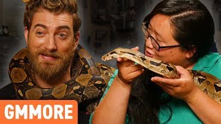 Download Hanging Out with TWO 6ft Boa Constrictors Video