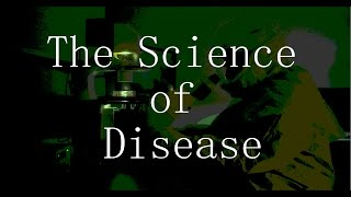 Download The Science of Disease: World War Z (2013) vs. Contagion (2011) Video